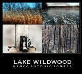 Lake Wildwood, IL