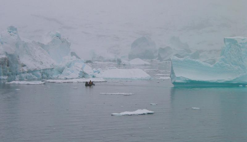 Tiny zodiac big iceberg
