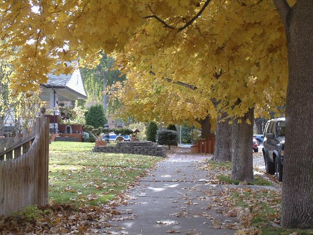 Autumn on 7th Ave, Pocatello, Idaho