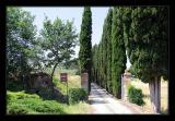 Tuscany 43.jpg