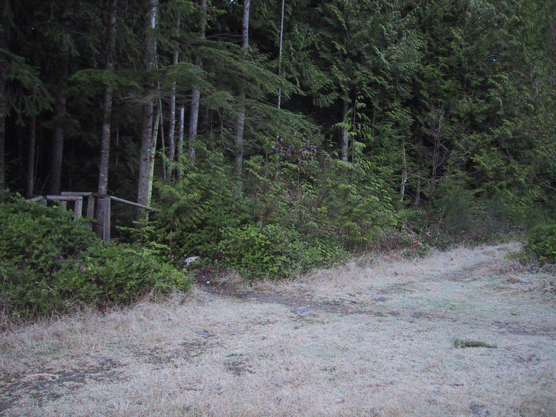 Big Tree Trail/Bonneville Power Line intersection (0.8) turn right on power line to Brink