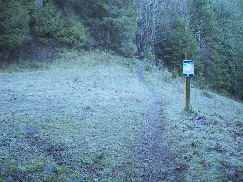 Poo Poo Point Trail (2.2)
