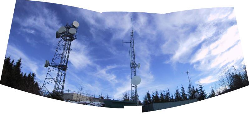 T2 Antennae