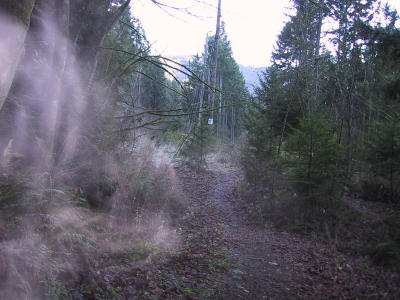 Trail to Issaquah HS (1.7)