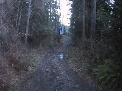 High School Trail