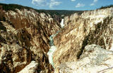 Yellowstone Canyon,  Wyoming - 1968