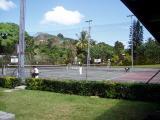 tennis et palmiers
