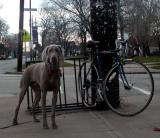 my bike guadian