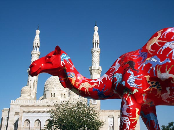 Painted Camel by Jumeirah Mosque