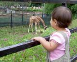3 July 2003 national zoo