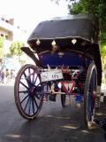 Luxor Cab.JPG