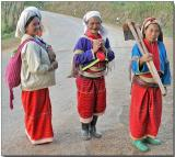 Hilltribe Ladies - returning from the field