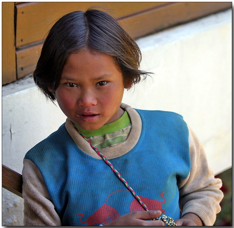 Curiosity - hilltribe young lady