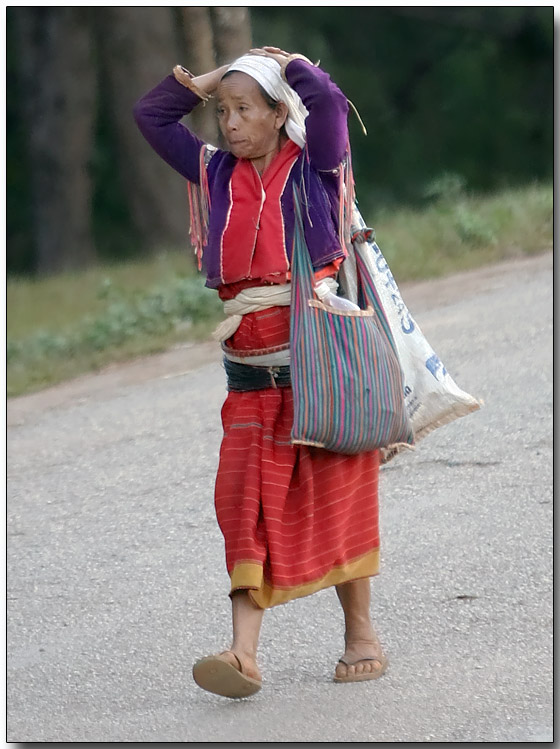 Returning from the market
