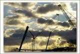 clouds and cranes