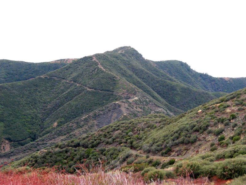 Distant trails