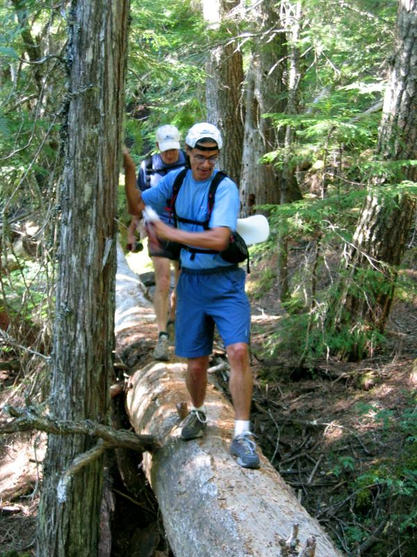 Tony crosses a log