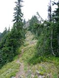 Trail to French Cabin