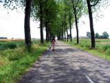 Eenum - Hogeweg