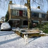 Joop's Dog Log - Thursday Jan 29 (2)