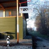 Joop's Dog Log - Tuesday Feb 24