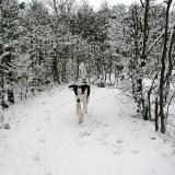 Joop's Dog Log - Friday Feb 27