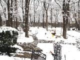 DSC03820 snow.jpg