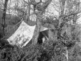Camping à Sesto