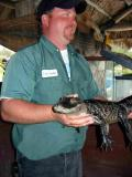 Our tour guide and a big bigger alligator