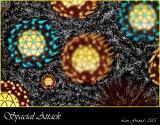 Spacial Attack - Febuary 02-05