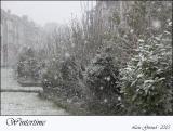 Wintertime - Febuary 24-05