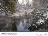 Winter Reflections - Febuary 25-05