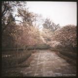 4.8 magnolia path