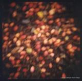 8.12 crabapple fall