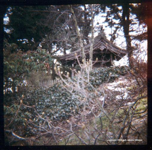 3.11 japanese garden temple