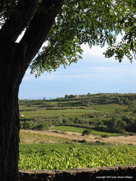 9.09 tree at les a pick
