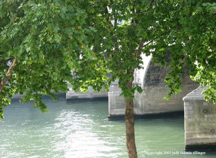 9.20 paris 5 seine and tree