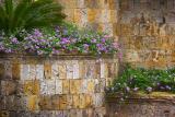 Flowers & Stone Walls