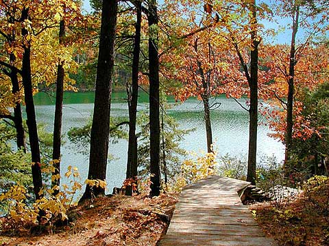 Pink Lake Steps