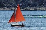 Sailing Boat near Camarat