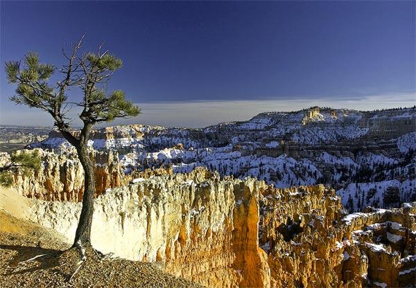 Bryce Canyon #1, Utah