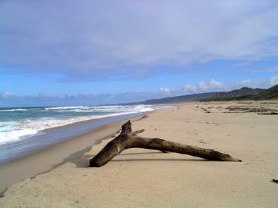 Morgan Lewis beach 4.jpg