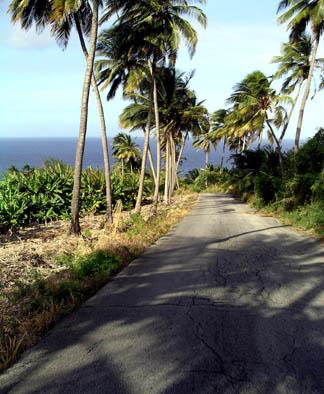 East coast road.jpg