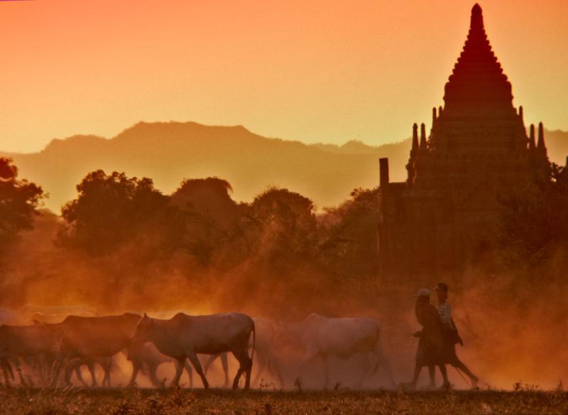 Perseverance, Bagan, Myanmar, 2005