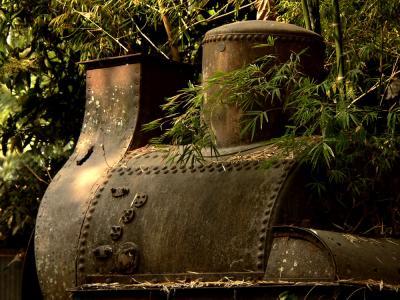 Remains of Failed Railroad, Khone Island, Laos, 2005