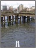 London 19th February 2004