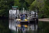 Kayakers on Gordon River