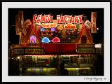 Erie County Fair 49