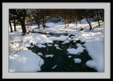 Winter 2005 23