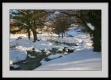 Winter 2005 28